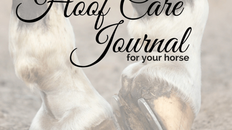 Keeping a Hoof Journal for Your Horse