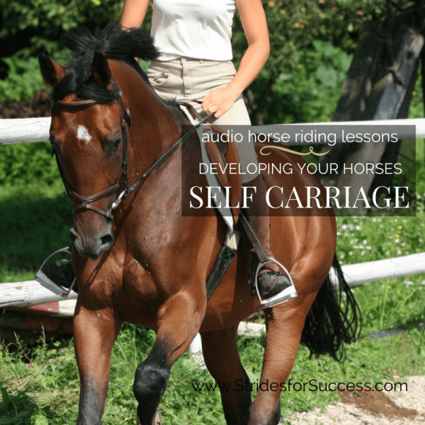 Developing Self Carriage in your horse