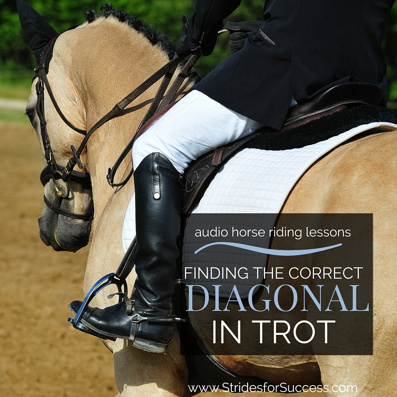 Finding the Correct Diagonal in Trot