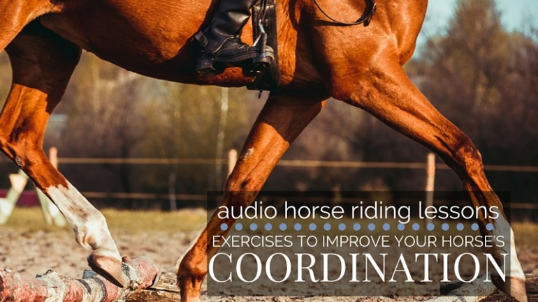 Exercises to Improve Your Horses Coordination