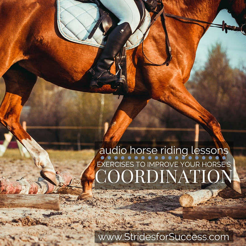 Imrpoving Your Horses Coordination