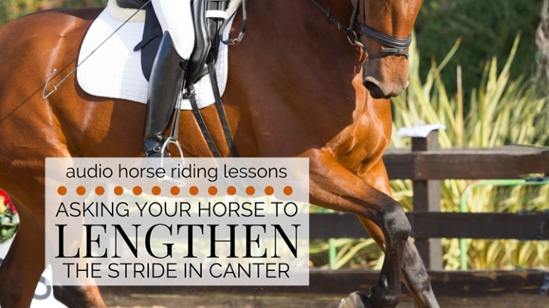 Asking Your Horse to Lengthen the Stride in Canter