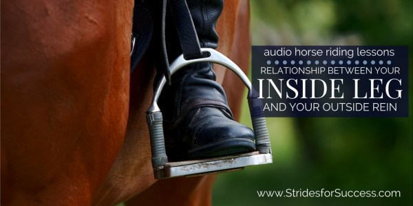 The Relationship Between Your Inside Leg & Outside Rein