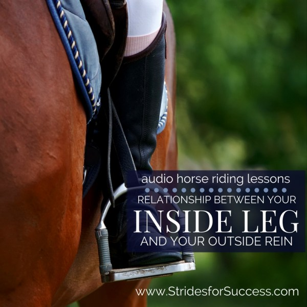 The Relationship Between Your Inside Leg & Your Outside Rein
