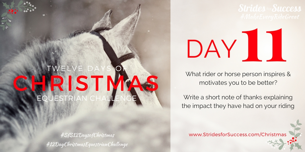 Strides for Success 12 Days of Christmas Equestrian Challenge Day 11
