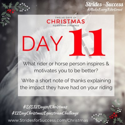 Day 11 ~ SfS 12 Days of Christmas Equestrian Challenge