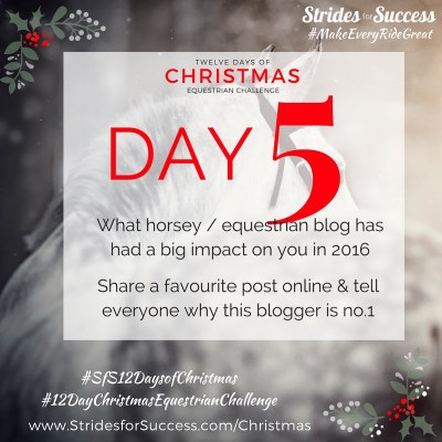 Day 5 ~ SfS 12 Days of Christmas Equestrian Challenge