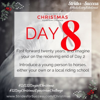 Day 8 ~ SfS 12 Days of Christmas Equestrian Challenge