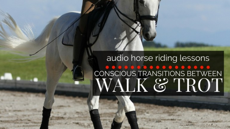 Conscious Transitions Between Walk & Trot