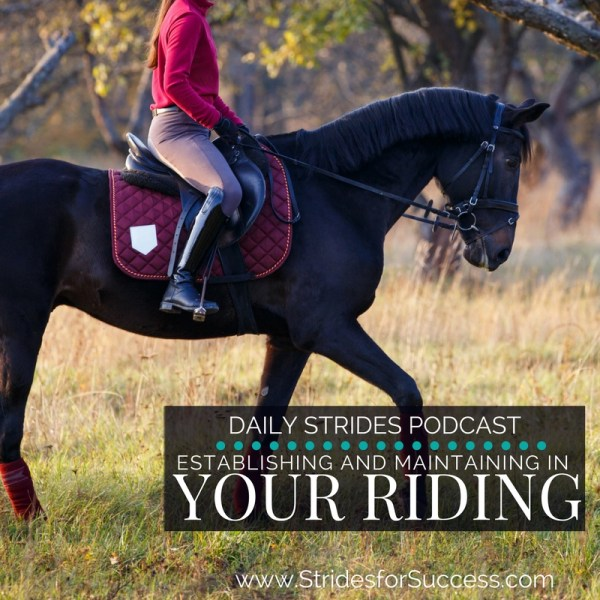 Understanding Establishing and Maintaining in Your Riding
