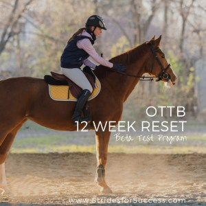 OTTB - Racetrack to Ready Program