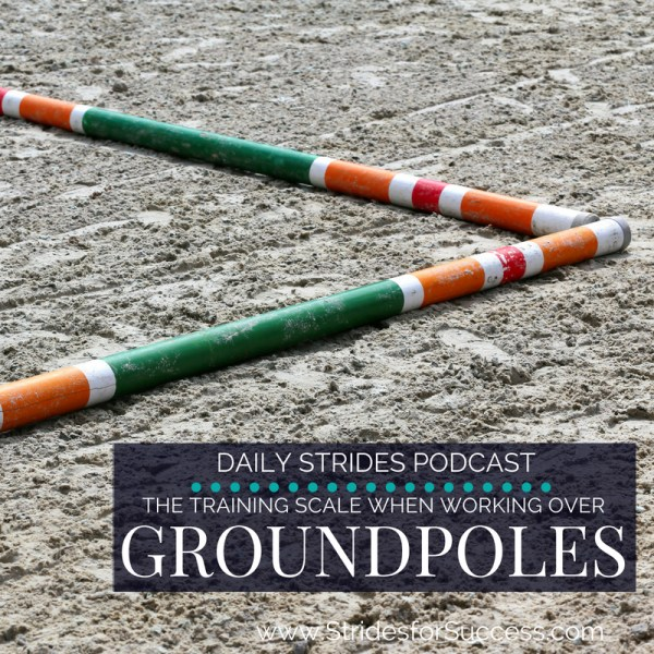 Working with the Training Scale over Groundpoles