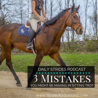 3 Mistakes Riders Makes when Riding the Sitting Trot