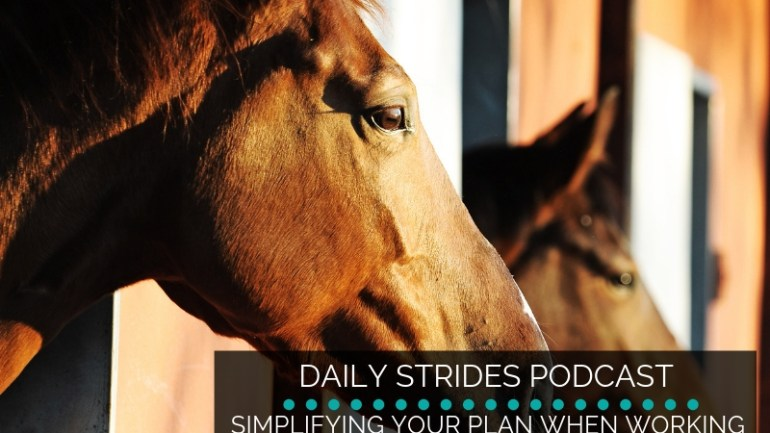 Simplifying Your Plan when Working Two Horses