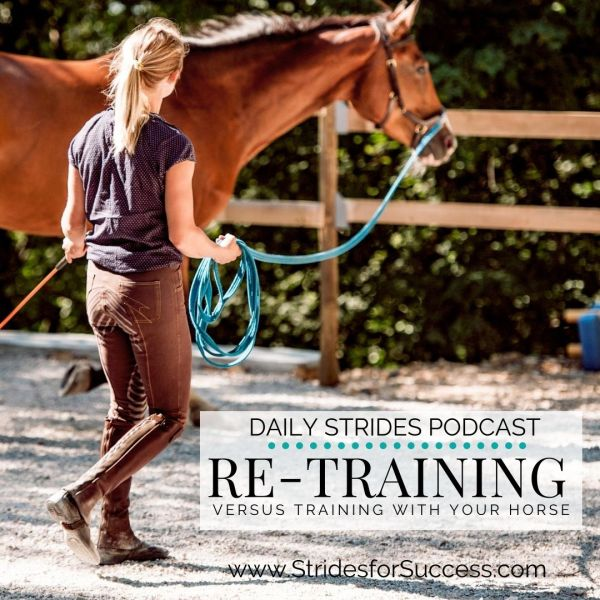 Retraining versus training your horse