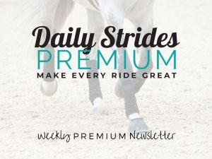 Daily Strides Premium Newsletter