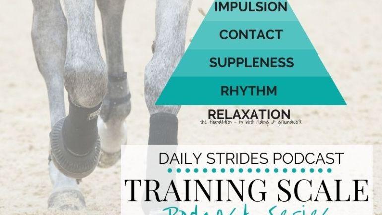 [Training Scale Series] Part 4 – Creating True Impulsion