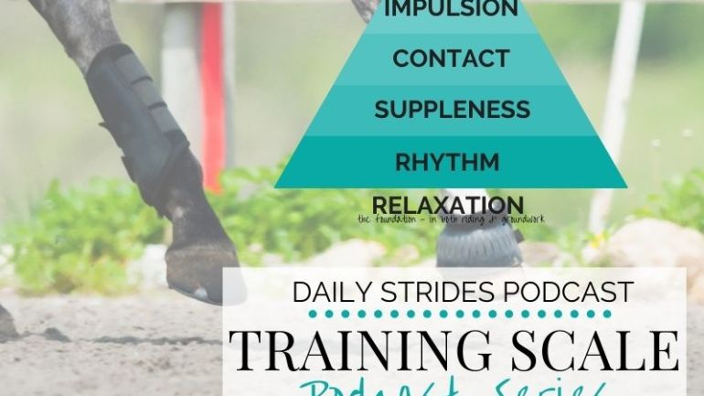 [Training Scale Series] Part 3 – Contact in Your Riding