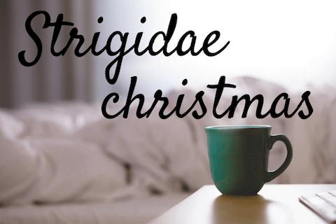 Strigidae Christmas