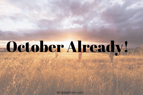 October already!