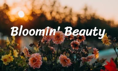 Bloomin Beauty!