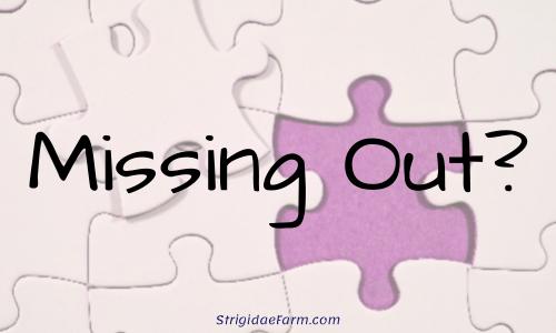 MissingOut