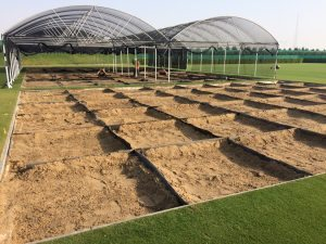 cultivar-trials-ready-for-receiving-rootzone-material-to-start-stage-2