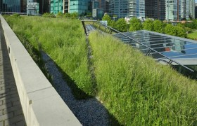 Going green – exciting developments for living roofs