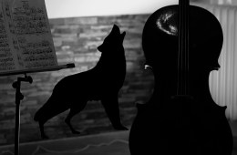 taming cello wolf tones