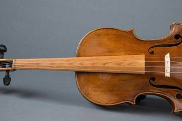 violin with Sonowood components