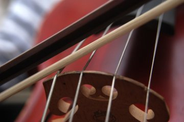 cello with bow close up on strings