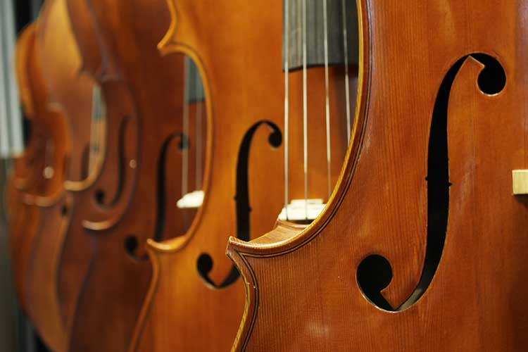 violin bodies and f-holes close up