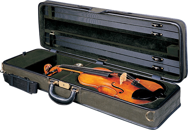 A Guide to Buying Violin and Viola Cases