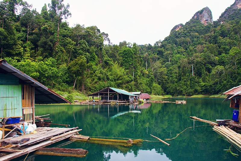 Khao Sok, Khao Sok national park, national park, thailand, surat thani, visit thailand, jungle trekking, jungle