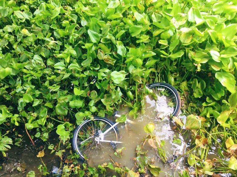 fietsen in bangkok, bangkok, backpacken, co van kessel, fietsen in bangkok met co van kessel, mountainbiken,