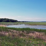 Wellfleet Wildlife Sanctuary