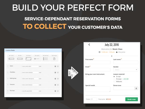 team booking wordpress plugin form