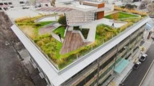 Зеленые крыши фото