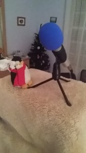 A small stuffed penguin looks at a microphone