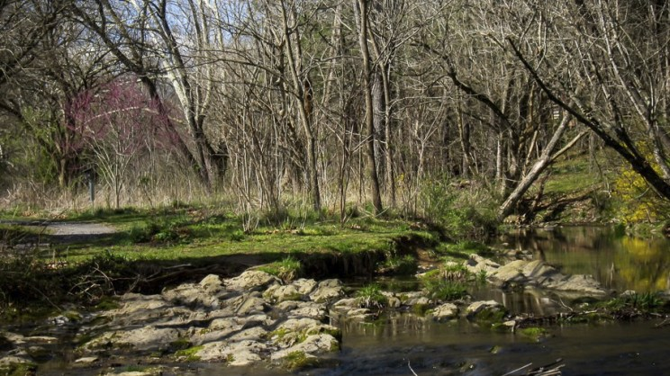 woods creek for web (1 of 1)