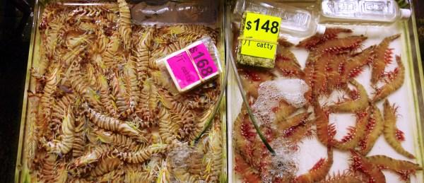 Hongkong exotische Märkte