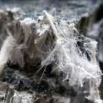 Mesothelioma Lawsuit: Dangers of Asbestos Exposure