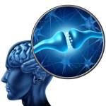 Studies show a link between Alzheimer's and insulin resistance