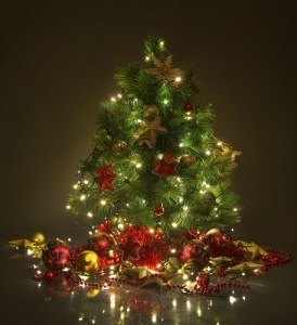Some quick safety tips can help you avoid personal injury this holiday season