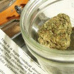More States See Recreational Marijuana on Ballot