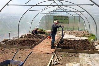 Working inside the polytunnel