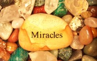 Spectacular miracle love spells in Trinidad