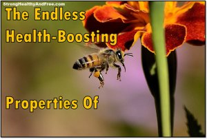Discover the Endless health boosting properties of propolis! #propolis #beeproducts #health
