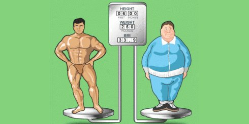 BMI Comparison - Weight Loss vs Fat Loss