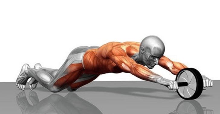 上級者以上対象】アブローラーで腹筋に最大限効かせるコツ | Sei書